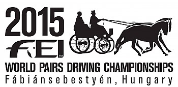 World pairs driving championship Hungary 2015